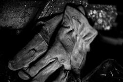 gloves (1 of 1)