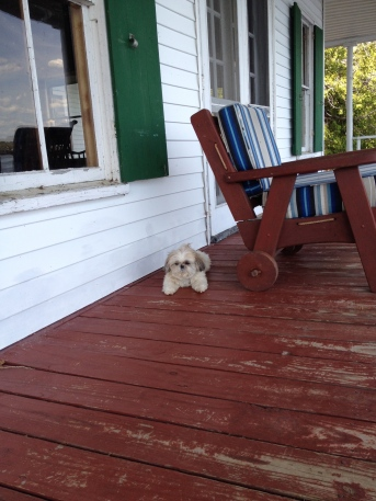 Lola's going to miss the old porch