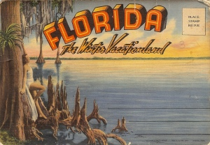 Florida-the-Winter-Vacationland-Postcard
