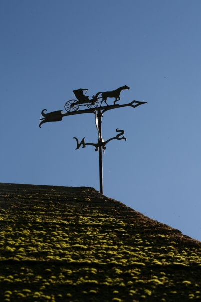weather vane (1 of 1)
