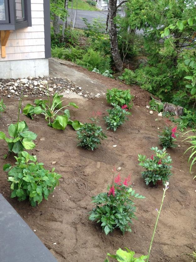 Day 1 - Helen's Garden - After
